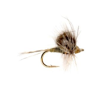 Cdc Loopwing Quill Emerger, Blue Wing Olive, 18