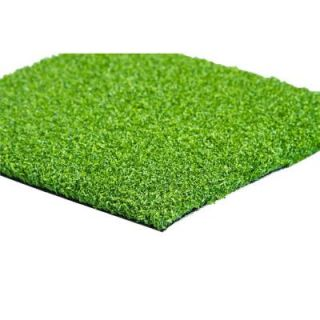 GREENLINE Putting Green 56 6 ft. x 8 ft. Artificial Synthetic Lawn Turf Grass Carpet for Outdoor Landscape GLPUTT5668
