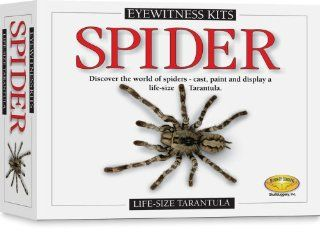 Skullduggery Eyewitness Kit Spider Casting Kit Toys & Games
