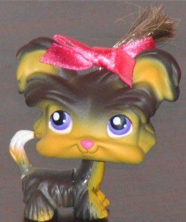 Yorkie Shih Tzu Puppy Dog # 398 (grey/tan with purple eyes and pink nose)   Littlest Pet Shop Replacement Figure Loose Retired LPS Collector Toy (Out Of Package/OOP): Everything Else