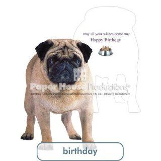 PaperHouse Productions Pug Birthday Card   Birthday Greeting Cards