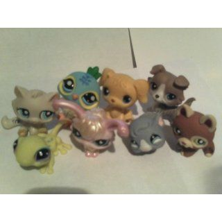 Littlest Pet Shop Collector's  Starter  Pack Toys & Games