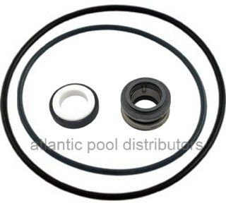 Sta Rite ABG Above Ground Pool Pump Seal Kit : Other Products : Patio, Lawn & Garden