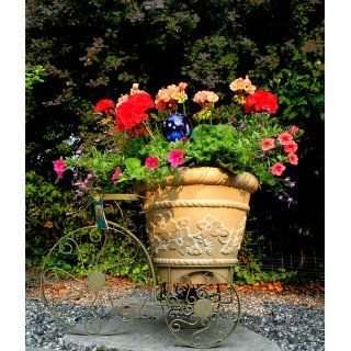 Panacea Products Whimsical Tricycle Plant Stand, Antique Willow Finish : Garden Decor : Patio, Lawn & Garden
