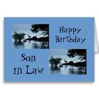 Happy Birthday Son in law, duck on island Greeting Card