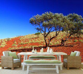 Fototapete Outback Australien KT217 Gr��e 420x270cm Tapete Natur Baum W�ste Küche & Haushalt