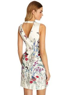Oasis Oriental butterfly fit and flare dress Multi Coloured