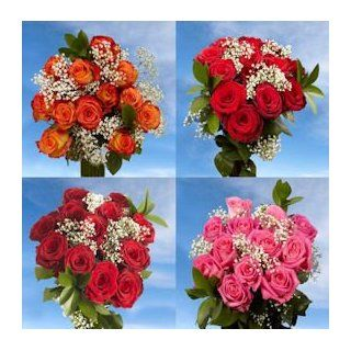 Deliver 12 Dozen Roses Best Price 6 Dozen Red Roses & 6 Dozen Assorted Color Roses : Fresh Cut Format Rose Flowers : Grocery & Gourmet Food