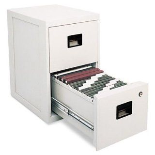 Sentry Safe FIRE SAFE 2 Drawer Insulated Vertical File, 17 1/4w x 23 1/4d x 28h, Light Gray   by BND 49074600013 6000 : Vertical File Cabinets : Office Products