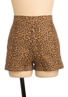 Stop Staring Purr fect Pin up Shorts  Mod Retro Vintage Shorts