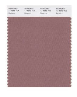 PANTONE SMART 17 1516X Color Swatch Card, Burlwood   Wall Decor Stickers