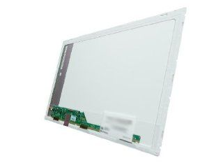 "Toshiba Satellite C855D S5202 15.6"" LAPTOP LCD SCREEN LED GLOSSY HD A++ (COMPATIBLE REPLACEMENT SCREEN) Computers & Accessories"