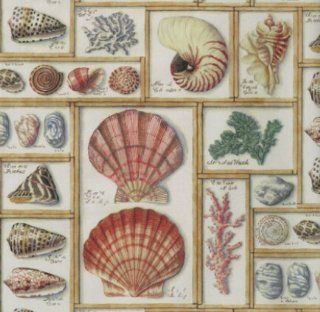 """Sea Shells Gift Wrapping Paper 24"""" X 6'  Other Products"""