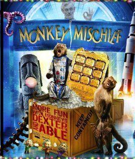 Monkey Mischief   More fun with Monkey's DEXTER and ABLE Ben Stiller, Owen Wilson Movies & TV