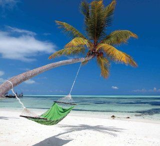 Wall Mural Photo of: A Palm Tree and Hammock at the Maldives Island. Full Size 9' wide by 8' high (2, 75m x 2, 44m). Prepasted Removable, Reusable, Dry Strippable, Washable. Easy to hang for a seamless look. Other sizes and also custom sizes availa