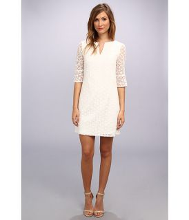 Adrianna Papell Daisy Embroidered Shift