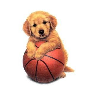 Basketball Puppy Cross Stitch Chart
