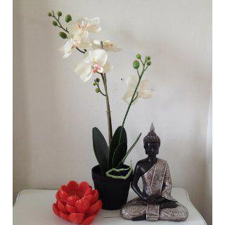 "8"" Thai Buddha Meditating Peace Harmony Statue   Buddha Figurine"