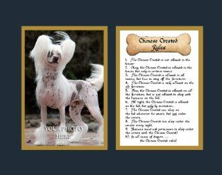 Dog Rules Chinese Crested Wall Decor Pet Saying Dog Saying   Decorative Plaques