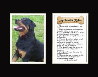 Dog Rules Rottweiler Wall Decor Pet Saying Dog Saying   Decorative Plaques