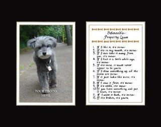 Schnoodle Property Laws Wall Decor Humorous Pet Dog Saying Gift   Decorative Plaques