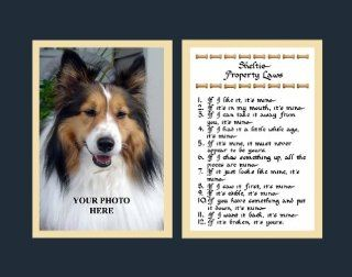 Sheltie Property Laws Wall Decor Pet Saying Dog Saying Sheltie Saying   Decorative Plaques
