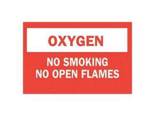 """No Smoking Sign, Brady, 88455, 7""""Hx10""""W"""