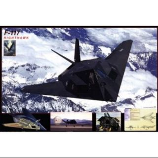 Airplane F 117 Nighthawk Poster Print (36 x 24)