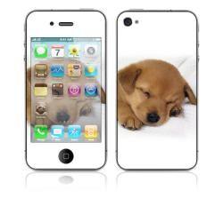 Animal Sleeping Puppy Apple iPhone 4 Skin   13192927