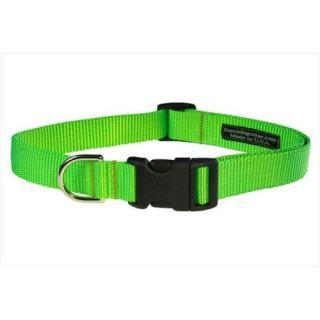 Sassy Dog Wear SOLID NEON GREEN SM C Nylon Webbing Dog Collar, Neon Green   Small