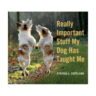 Really Important Stuff My Dog Has Taught Me (Paperback)